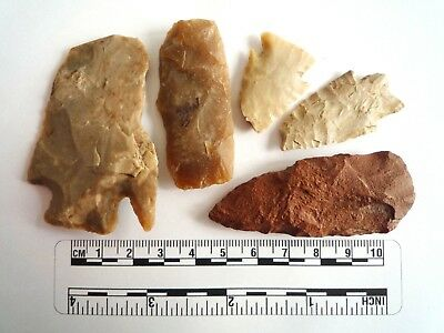 Native American Arrowheads found in Texas x 5, dating from approx 1000BC  (2276)