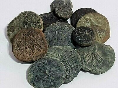 Superb Lot Of 12 Ancient Bronze Coins Ptolemy Unsearch Very Interest