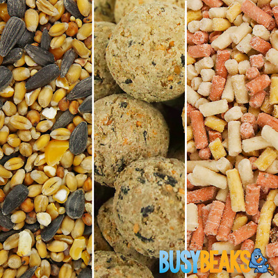 BusyBeaks Starter Pack Bundle - Protein Rich Garden Wild Bird Food Snack Mix