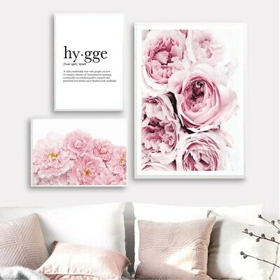 Pink Floral Peony Scandi Flower Photography Canvas Painting Art Picture Decor
