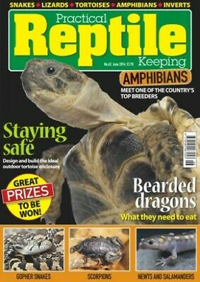 Practical Reptile Keeping No. 62 June 2014 - Staying Safe (Tortoise Enclosures)