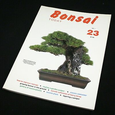 Bonsai Today Magazine 1993 #23 Juniper Layer - ONLY £3 POST>USA PER EXTRA ISSUE!