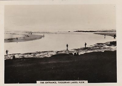Vintage Photograph - The Entrance - Tuggerah Lakes NSW