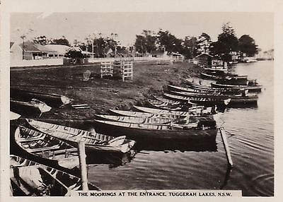 Vintage Photograph - The Moorings at The Entrance Tuggerah Lakes NSW