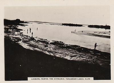 Vintage Photograph - Looking North -  The Entrance Tuggerah Lakes NSW