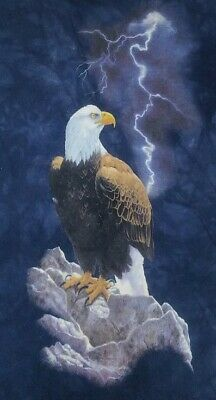The Mountain Mens T shirt Short Sleeve Eagle Thunder Printed in Usa