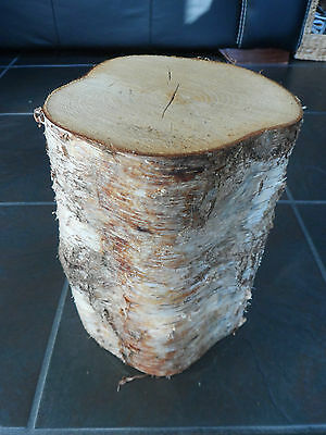 "Silver Birch Bark wood Log Decorative Display Log centerpiece 12"" tall. 6-7"" dia"