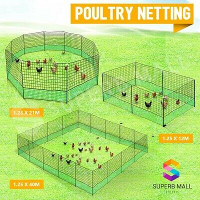 Poultry Net Chicken Netting Fence Hens Ducks Gooses 12/21/40M with Posts