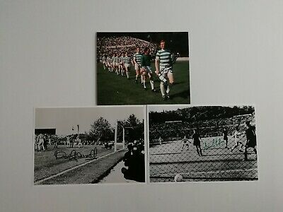 Billy McNeill, Stevie Chalmers and Tommy Gemmell signed Celtic photos / COA