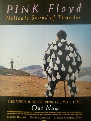 Pink Floyd - Delicate Sound Of Thunder - Mini Press Poster