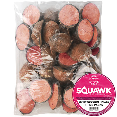 SQUAWK Berry Suet Filled Coconut Halves - Nutritious Fresh Garden Wild Bird Food