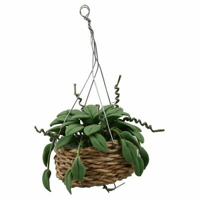 1/12 Scale Dollhouse Miniature Hanging Plant Garden Accessory S7R5
