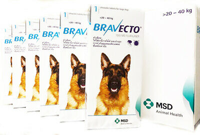 CHEWABLE TABLETS ORAL BRAVECTO 1000 mg. LARGE DOGS 20-40 Kg. BLUE PACK EXP 2021