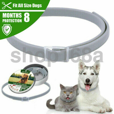 Dewel Adjustable Flea & Tick Collar Anti Insect Pet Cat Dogs 8 Month Protection