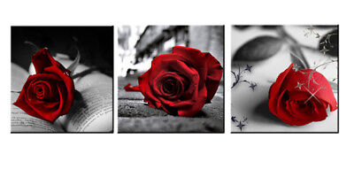 Framed 3 Pcs Red Rose Flowers Book Gray Canvas Wall Art Pictures Canvas Print