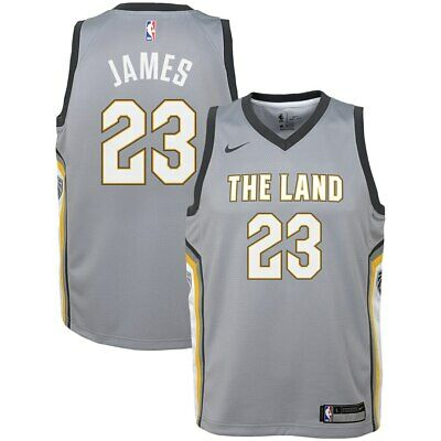100% authentic 40b89 5a24a NIKE CLEVELAND CAVALIERS Lebron James Icon Authentic Jersey ...