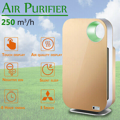 Air Purifier Detector HCHO Remove PM2.5 Indoor Negative Ion Purifier w/ HEPA
