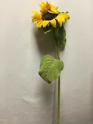 New Pottery Barn Set Of 3 Faux Sunflower Stems Tall Spring Summer Fall Autumn Hlpsocialsquare Com