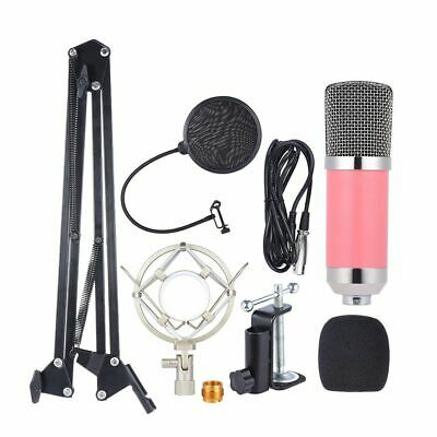 Professional Broadcasting Studio Recording Condenser Microphone With Shock Mount