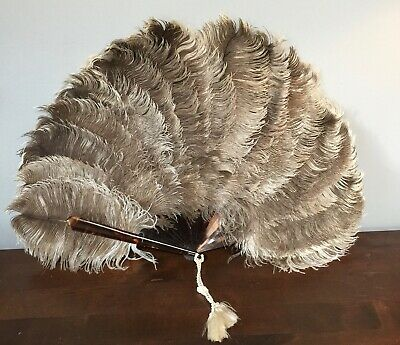 "19th c Vintage Victorian Mottled Ostrich Feather Fan  23"" open"
