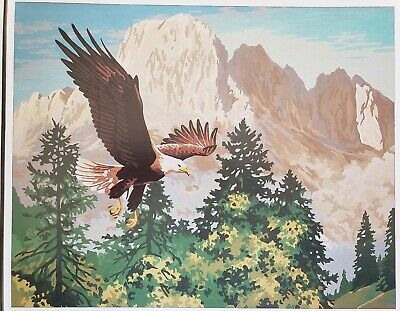 Vintage Craft House Paint by Number Oil Set The Eagle Mountains 16x20 Unfinished
