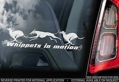 Whippets in Motion - Car Window Sticker - Whippet Snap Dog on Board Sign - TYP3