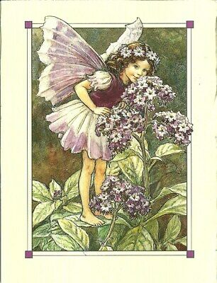 abstract wall art The Heliotrope Fairy  flower fairy art poster