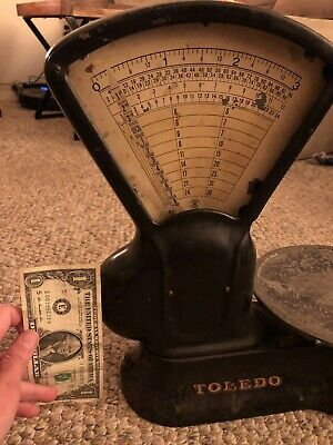 TOLEDO HONEST WEIGHT Scale Readout for Grain Bin, 5000 Lb, No