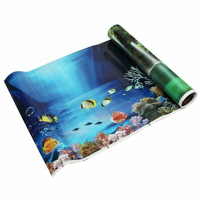 Blue Fresh Sea Background Aquarium Ocean Landscape Poster Fish Tank I2S5