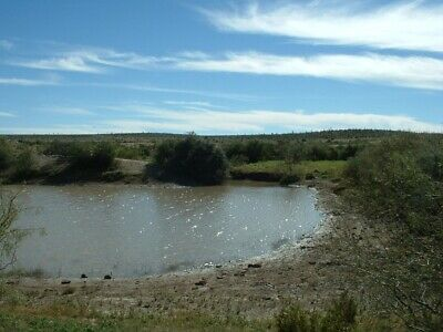 Stock Tank On Land! 20 Acres Texas Land Bid On Down Payment Only! No Reserve Bid