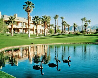 Marriott Desert Spring Villas Ii - Palm Desert, Ca - Even Wk 26