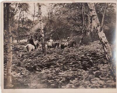 High Beech Epping Forest Horse Riders chevaux equitation cavalier old Photo 1934