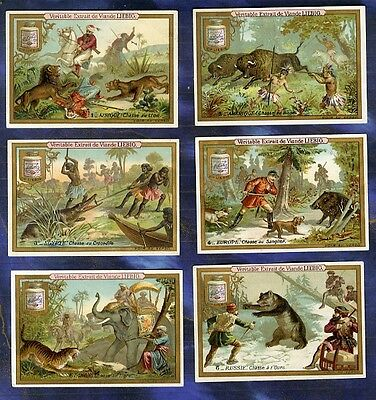 Serie 6 Chromos Liebig S234  chasse ours tigre elephant lion Stickers Trade Card