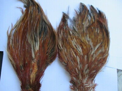 Veniard Chinese Cock Necks12 ColoursFly Tying Feathers