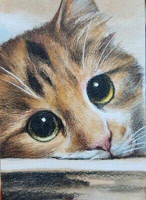 CAT ORIGINAL ACEO Colored Pencil Painting Art Card Collect Kitten Gift Yellow