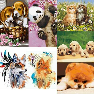 DIY Craft Oil Painting By Number Kit Pet Dog Cat Panda Painting Home Decor~Gifts