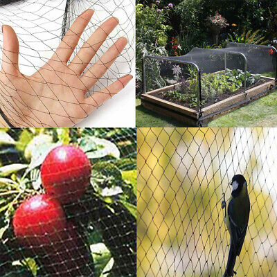 10/15/25/30m Anti Bird Net Netting Garden Fruit Crop Plant Tree Protect Mesh