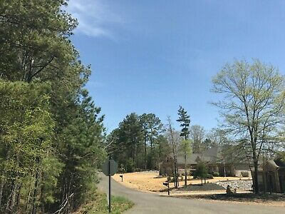 NEW! Spacious Residential Lot in Hot Springs Village (NO RESERVE!) - Goce Ln