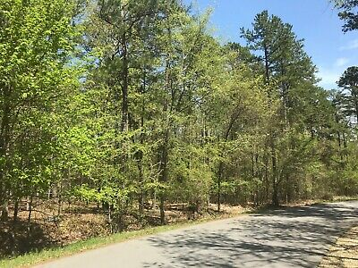NEW! Perfect Residential Lot in Hot Springs Village (NO RESERVE!) - Surtidor Ln