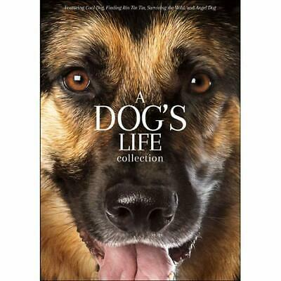 A Dogs Life Collection (DVD, 2019). Brand new factory sealed