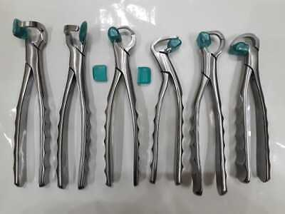 Physics Forceps Set of 6 Pieces Dental Instruments in Rust free packing