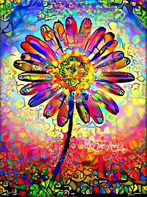 Nik Tod Original Painting Signed Art Textured Colors Colorful Daisy Flower 2 Uk
