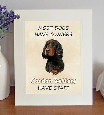 Gordon Setter 10 x 8 Free Standing Picture/Print, Fun 'STAFF' Quote, Lovely Gift