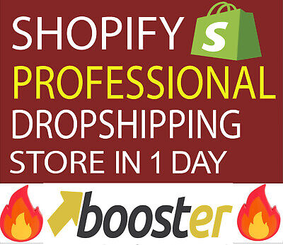 I will build a Shopify Dropshipping store with a PREMIUM theme in 1 DAY + Gift🔥