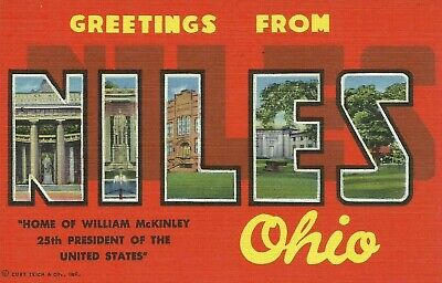 Greetings From Niles Ohio Large Letter Linen Postcard Curt Teich
