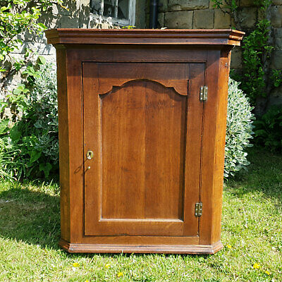 George III Oak Panelled Wall Hanging Corner Cabinet C1800 (Georgian)