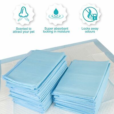Petsentials Puppy Training Pads 105 Pack   DAMAGED PACKAGING