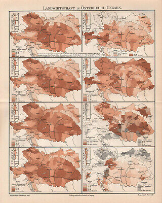 Antique map. AGRICULTURE IN AUSTRO - HUNGARIAN EMPIRE. c 1905