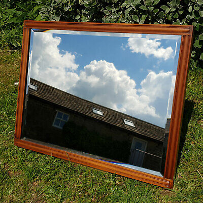 Victorian Mahogany Frame Wall Mirror Late C19th (Antique)