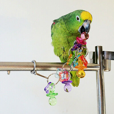 Parrot Bird Bites Chew Acrylic Toys Swing Cage Hanging Cockatiel Parakeet ZF